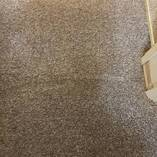 Fall Carpet Cleaning Specials Winnipeg City Carpet Cleaning 3