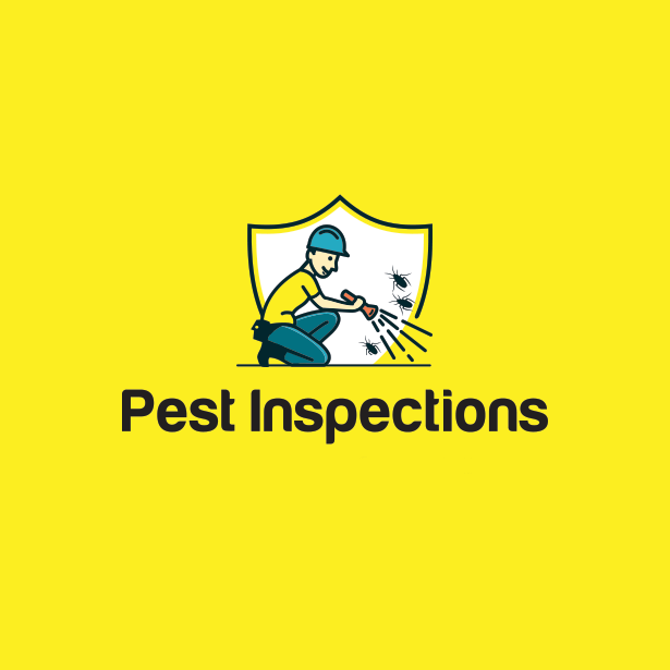 Pest Control Experts | Red Deer | Airdrie | Central Alberta