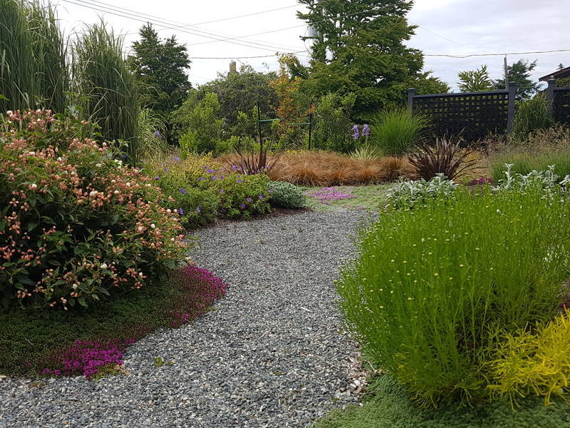Drought tolerant herbs and ornamental grasses turn this front yard Garden design into something spectacular.