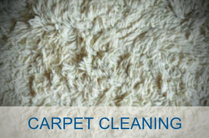 Ottawa Carpet Cleaning Professionals