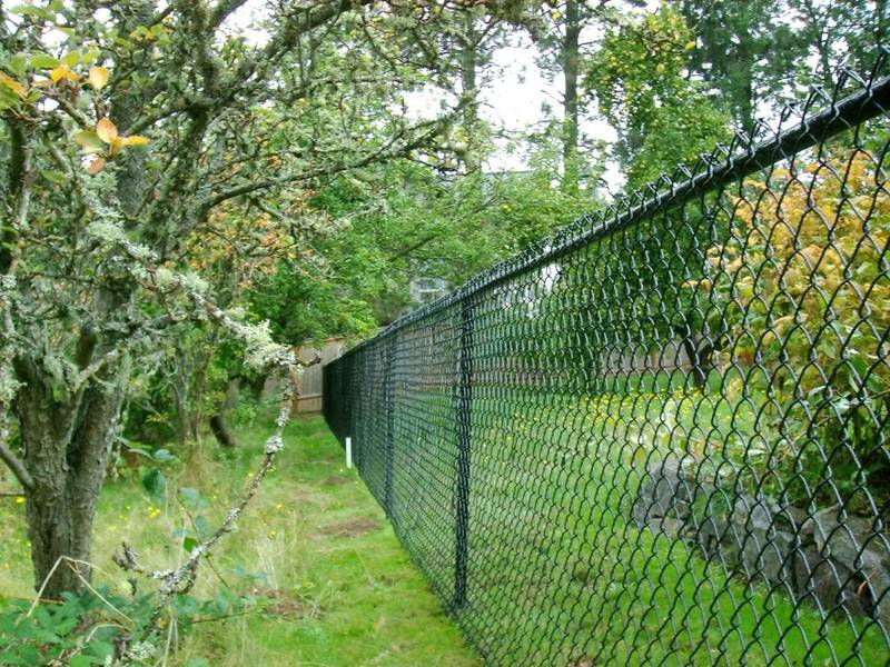 Black Vinyl-Coated Fence