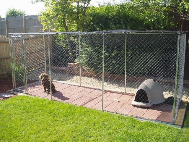 Backyard Kennel